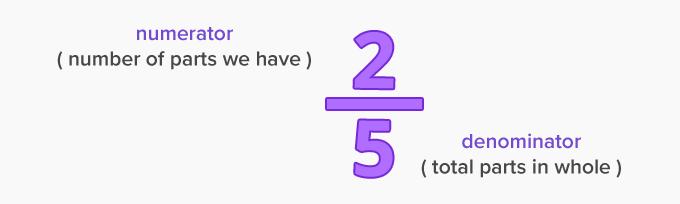 a numerator and a denominator