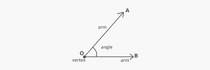 parts of an angle arms vertex