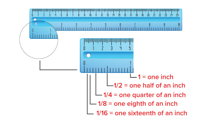Inches, half inch and quarter inch on a ruler