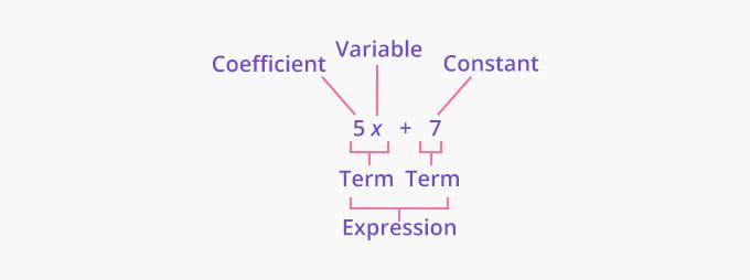 Parts of an algebraic expression