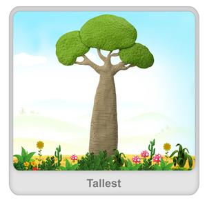 Tallest Worksheet