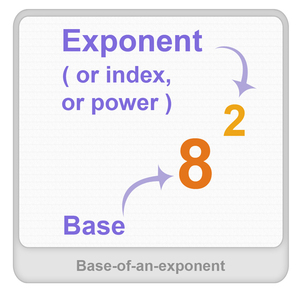 Base of an exponent Worksheet