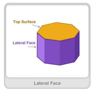 math worksheet : lateral face  definition examples  fun math worksheets  splash  : Face Math Worksheets